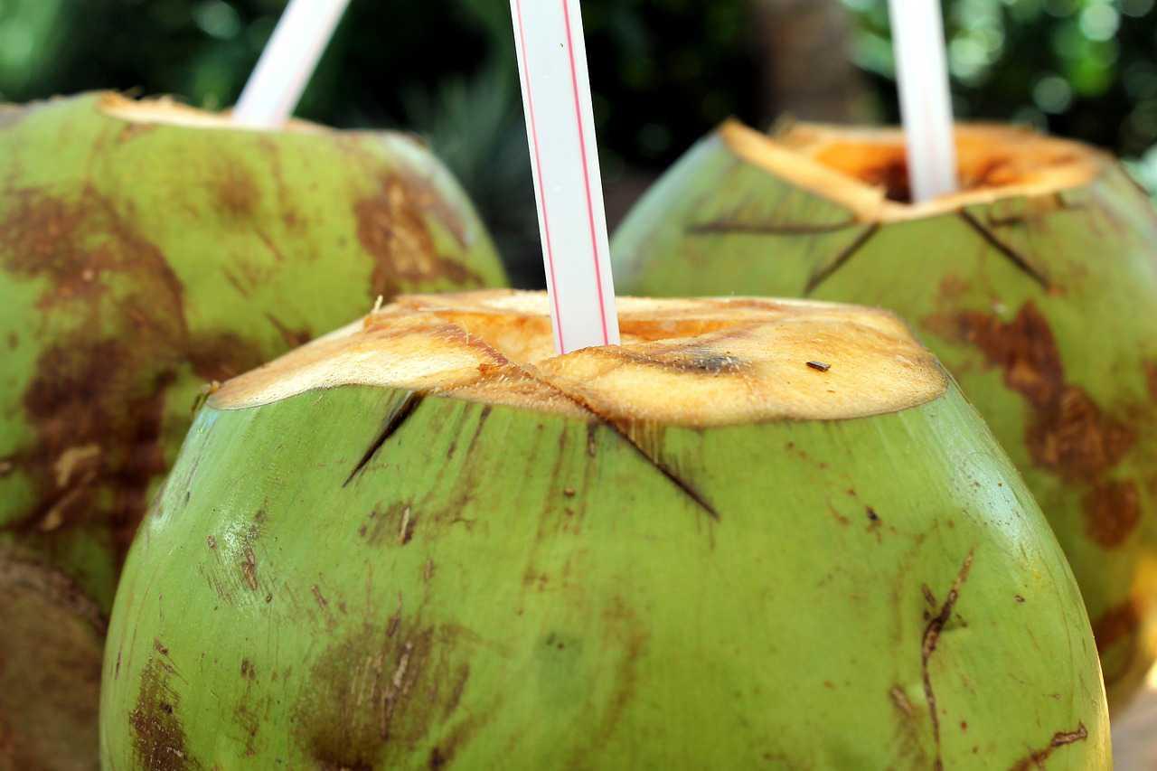 Sugar Free Drinks - Coconut Water