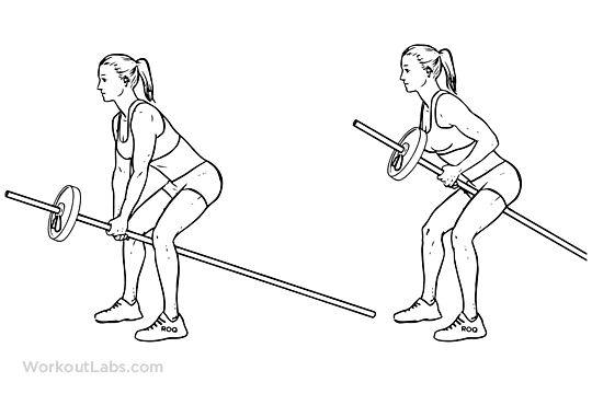 Bent over one arm long bar row