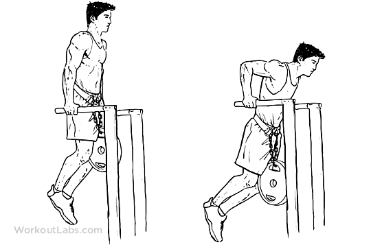 Dips – triceps version
