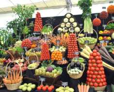Health Benefits of Vegeaerian Diet