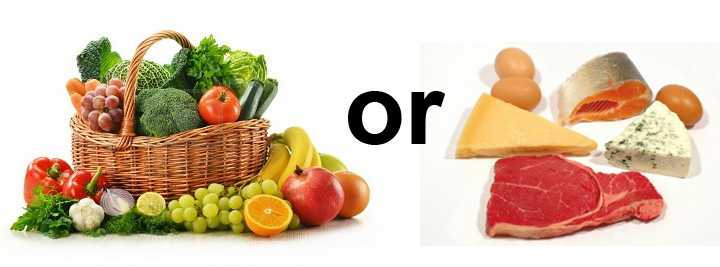 Meat Diet or Vegetarian Diet