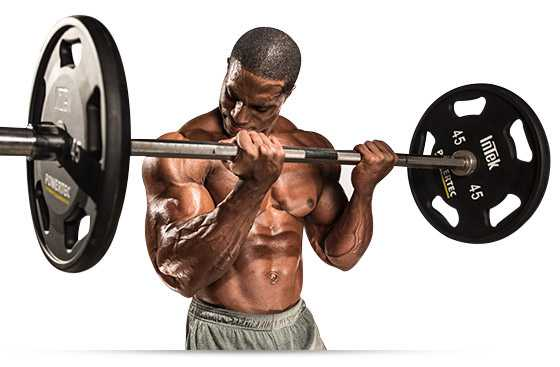 science of building muscles