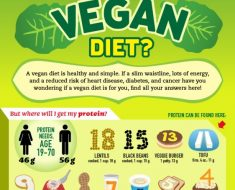 vegan diet information