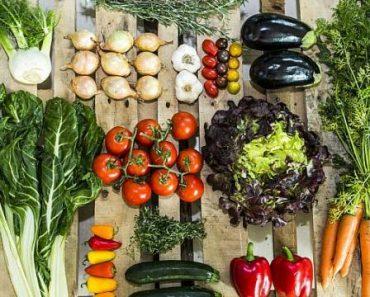 vegetarian diet meal plan