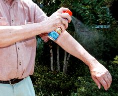 insect repellents 2016