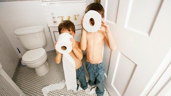 toilet paper brands