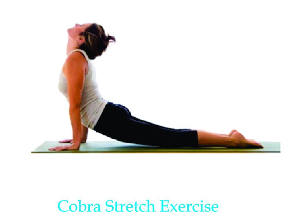 cobra stretch grow taller exercise