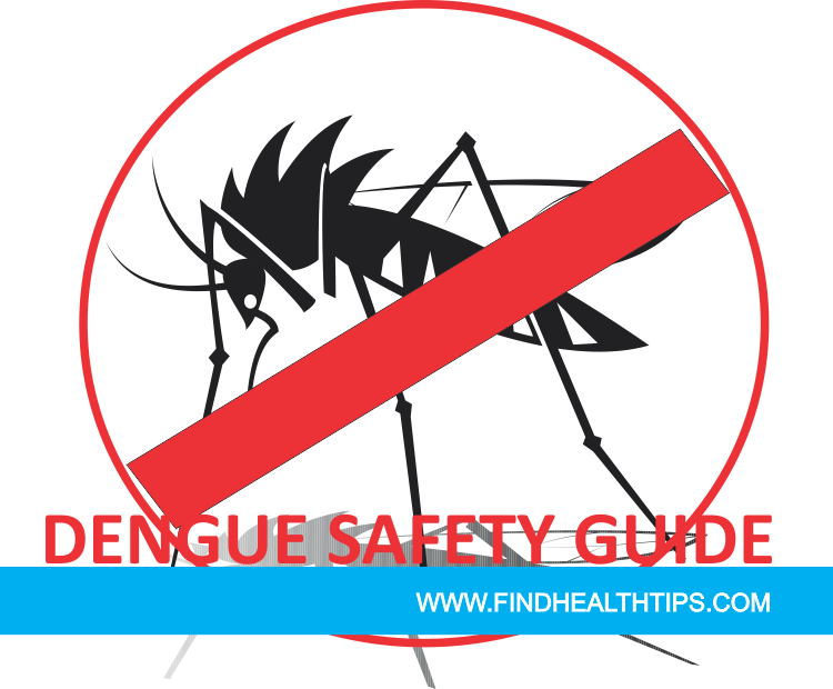 DENGUE SAFETY GUIDE