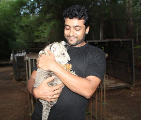 Surya No Makeup