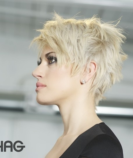 Cropped Shine Hairstyle for Women