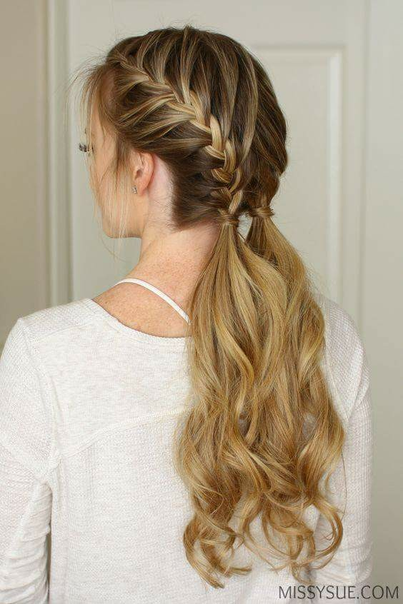 Braided Twin Ponytails Long Hair