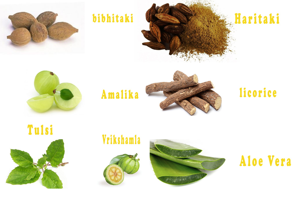 Herbs Ayurvedic Supplements for Weight Loss