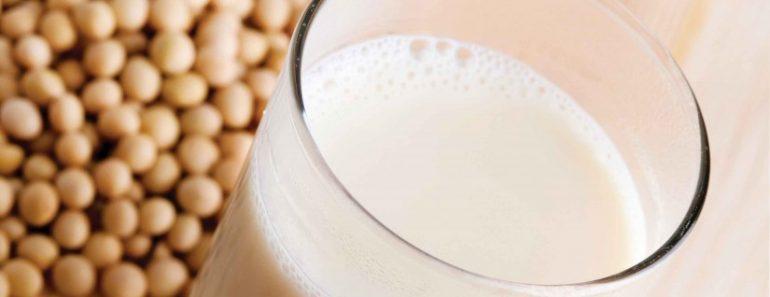 soy free milk