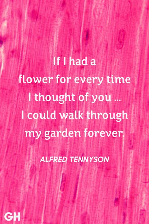 valentine's day celebration quotes