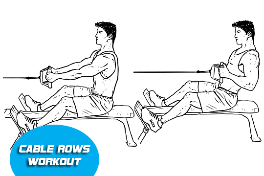 cable row full body workout