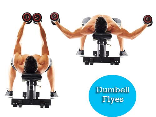 dumbbell flyes full body workout