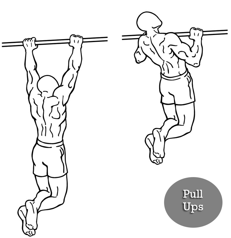 pull ups full body workout