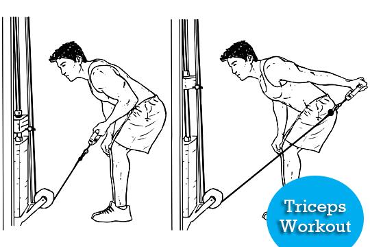 triceps kickback full body workout