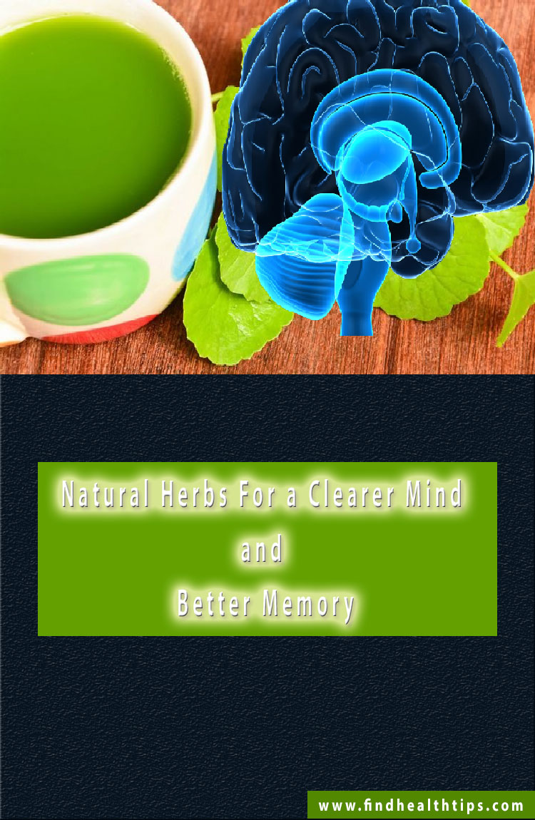 natural brain tonics