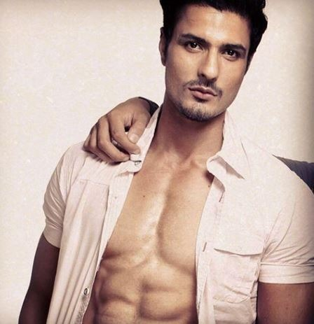 Vin Raina Most Handsome Indian TV Actors