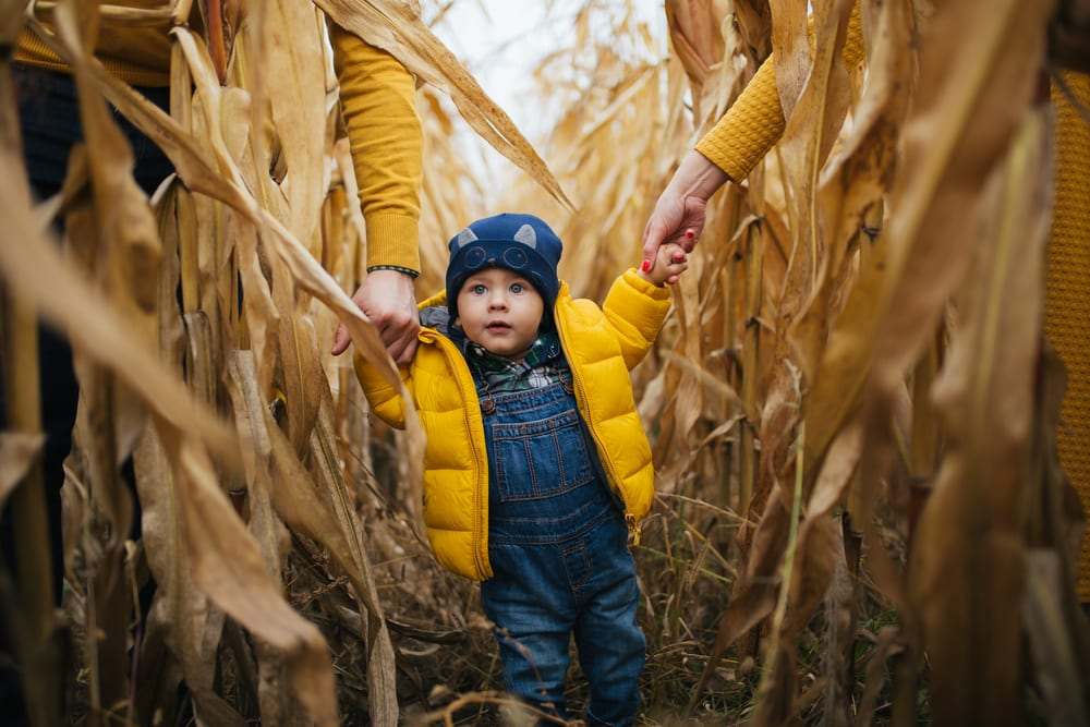 Exciting Things to Do with Your Kids This Fall