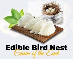 edible bird nest