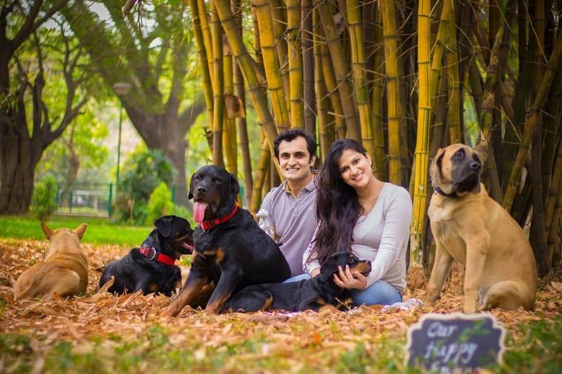 Pet Girl India