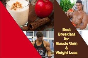 best breakfast muscle gain weight loss