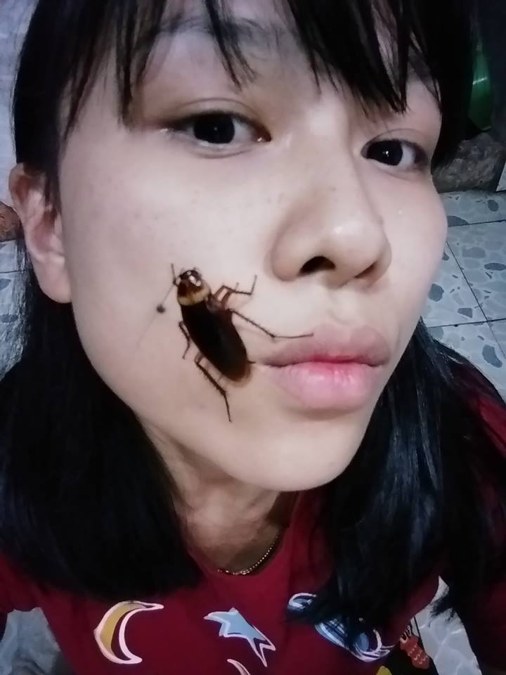 VIRAL : Cockroach Trend is Alarming