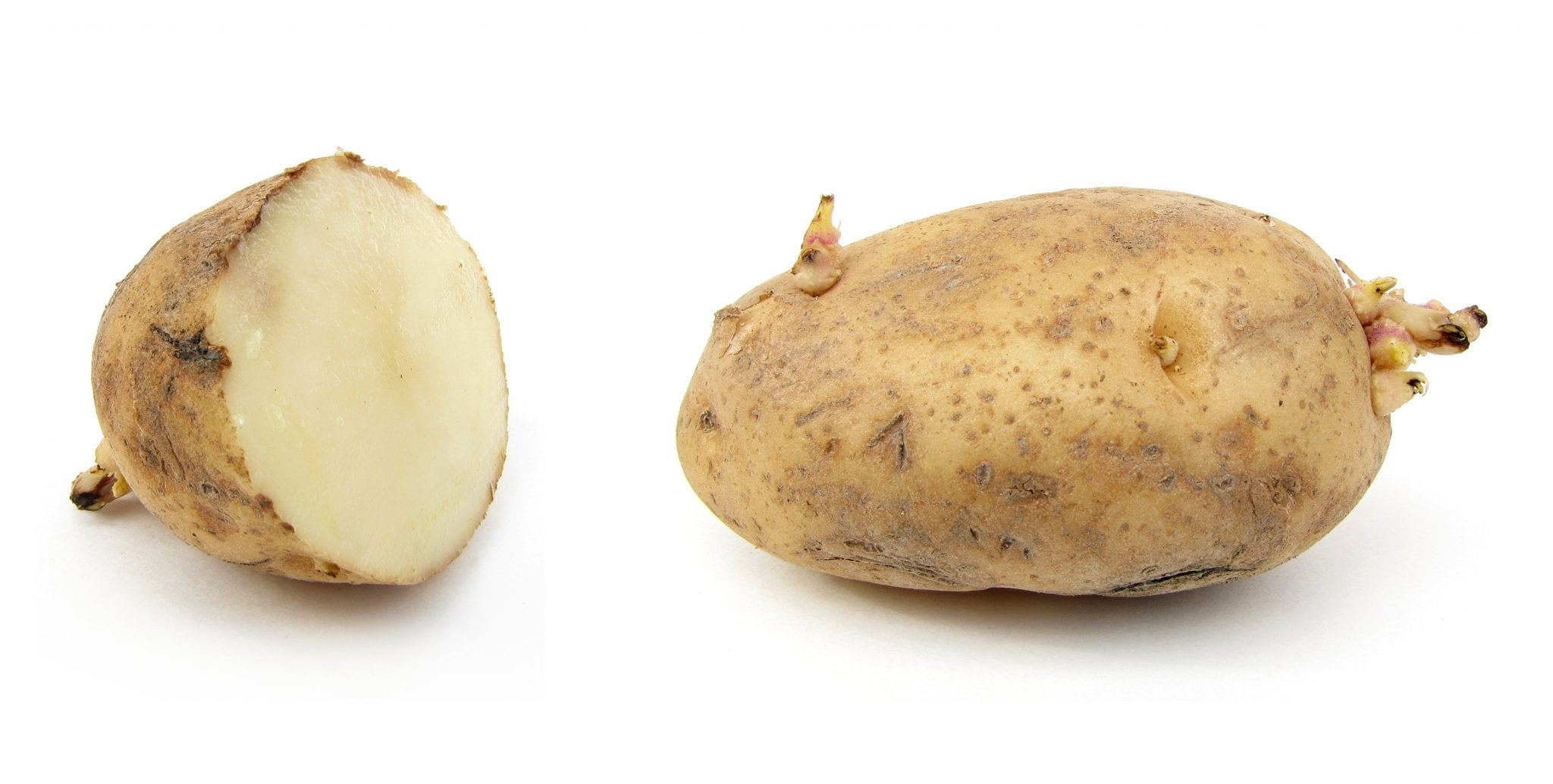 Potato - remove tan from arms instantly