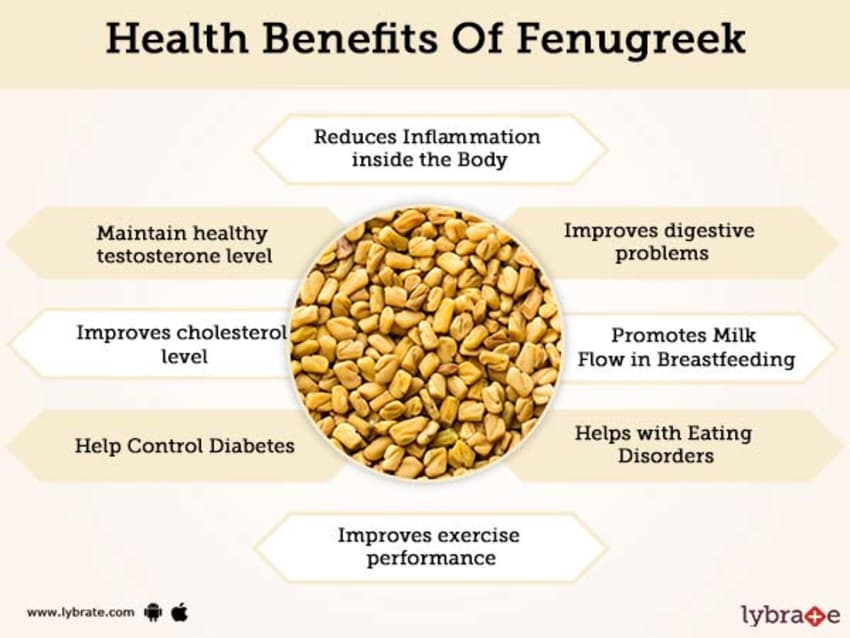 How to Use Methi Leaves (Fenugreek) for Skin, Hair & Health? 1