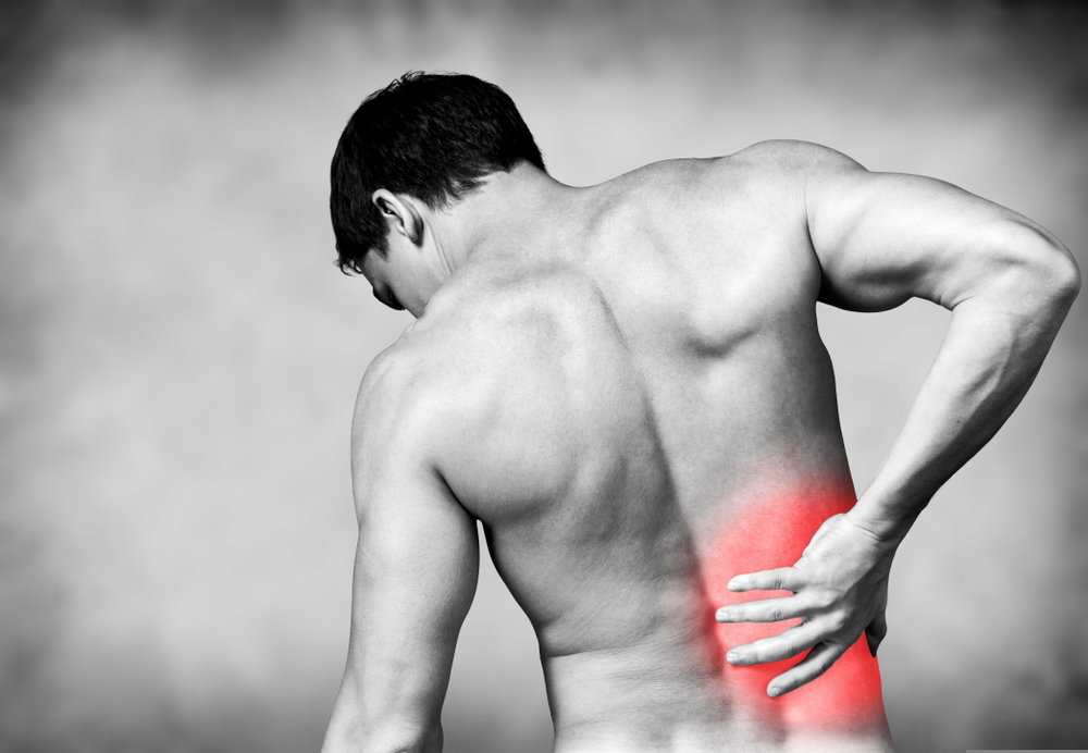 Why Optimal Back Support is so Important When You Have Pain