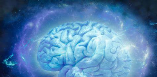 Nootropics Brain