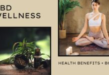 CBD wellness health benefits