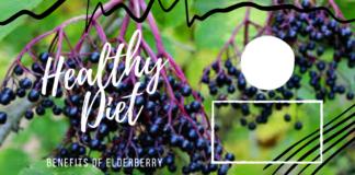 Benefits of Elderberry - Healthy Diet