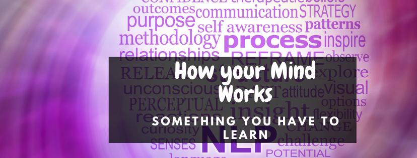nlp mind works